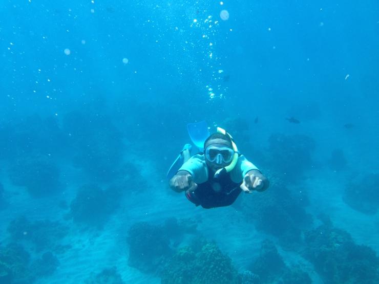 Snorkel 2