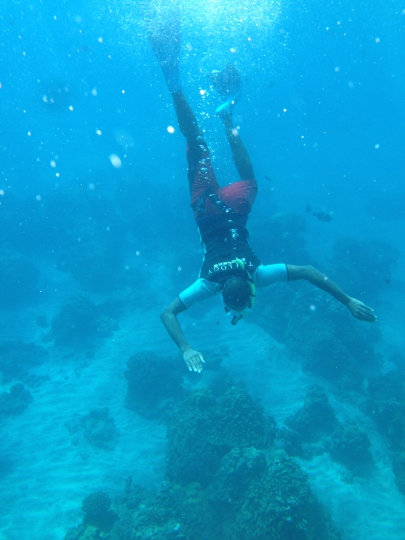 Snorkel 5